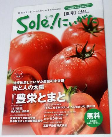 Soleniigata01