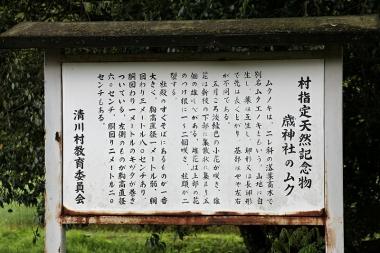 Toshijinjyamuku02
