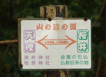 2011yamanobe01