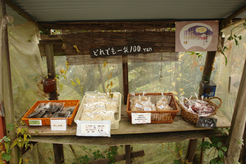 2011yamanobe03