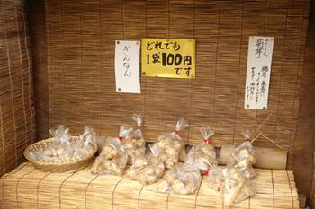 2011yamanobe05