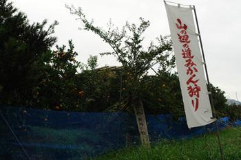 2011yamanobe06