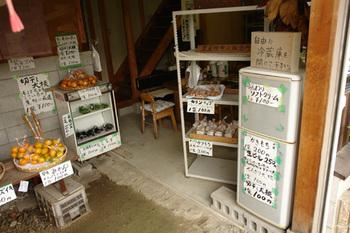 2011yamanobe09