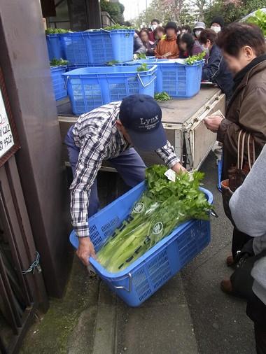 Celery04