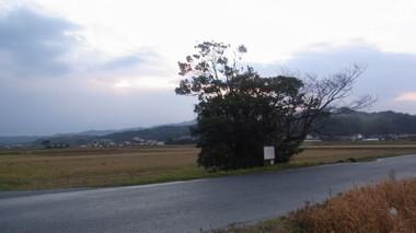 Ounomori01