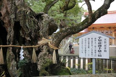 Ooyamadumi05