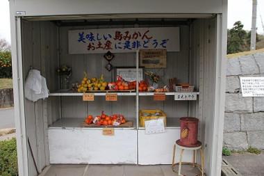 Mujinichi02