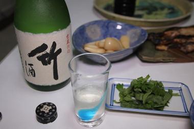 Dewatsurutake03