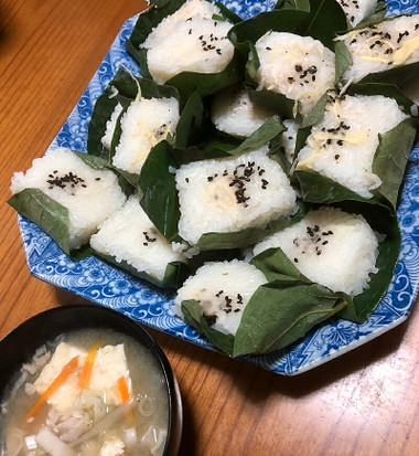 Kakinohazushi01