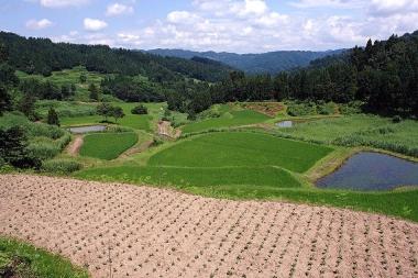 Matsushirotanada01