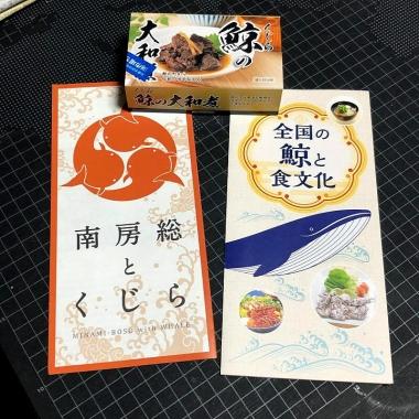 Minamibousoukujira01