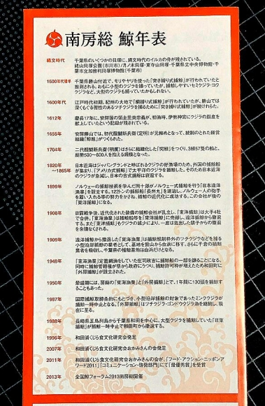 Minamibousoukujira04